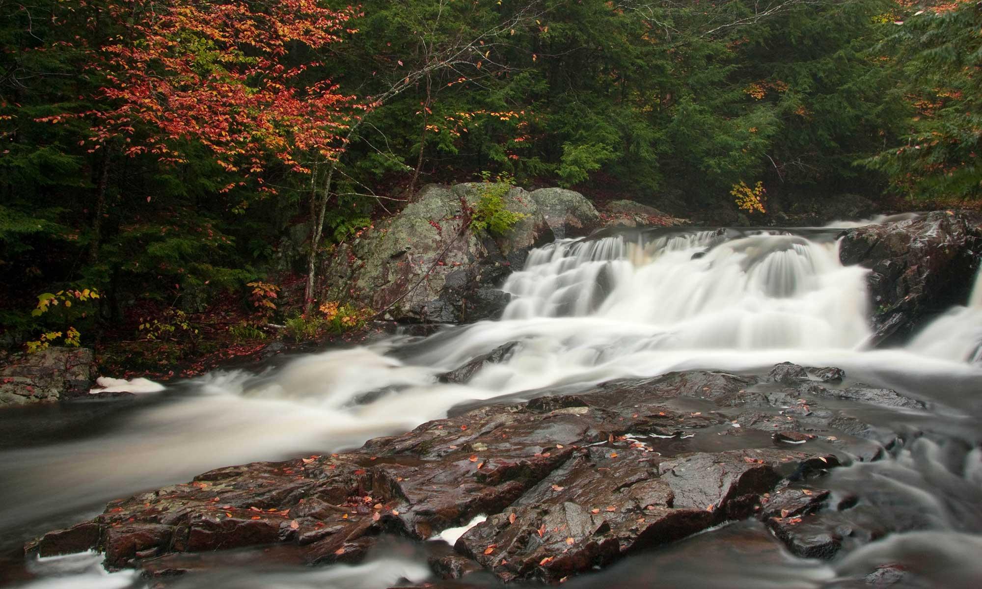 Adirondack stream