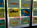 Paintings of different fish by middle school students